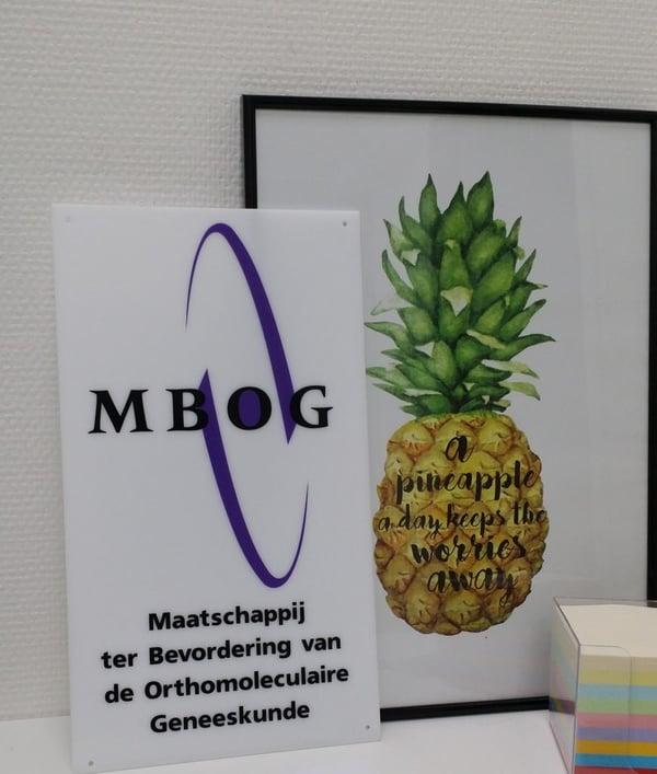 De MBOG waarvan de begeleiders lid zijn bij Nederland Slank