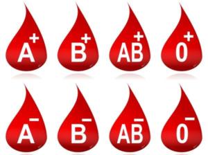 bloedgroepen-300x224