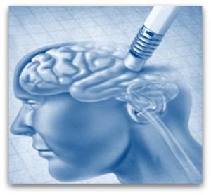 welke factoren hebben invloed op je hersenen