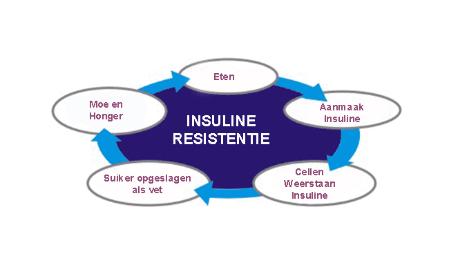 Insulineresistentie1-1