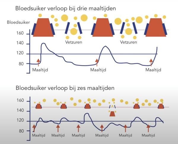 bloedsuikerverloop
