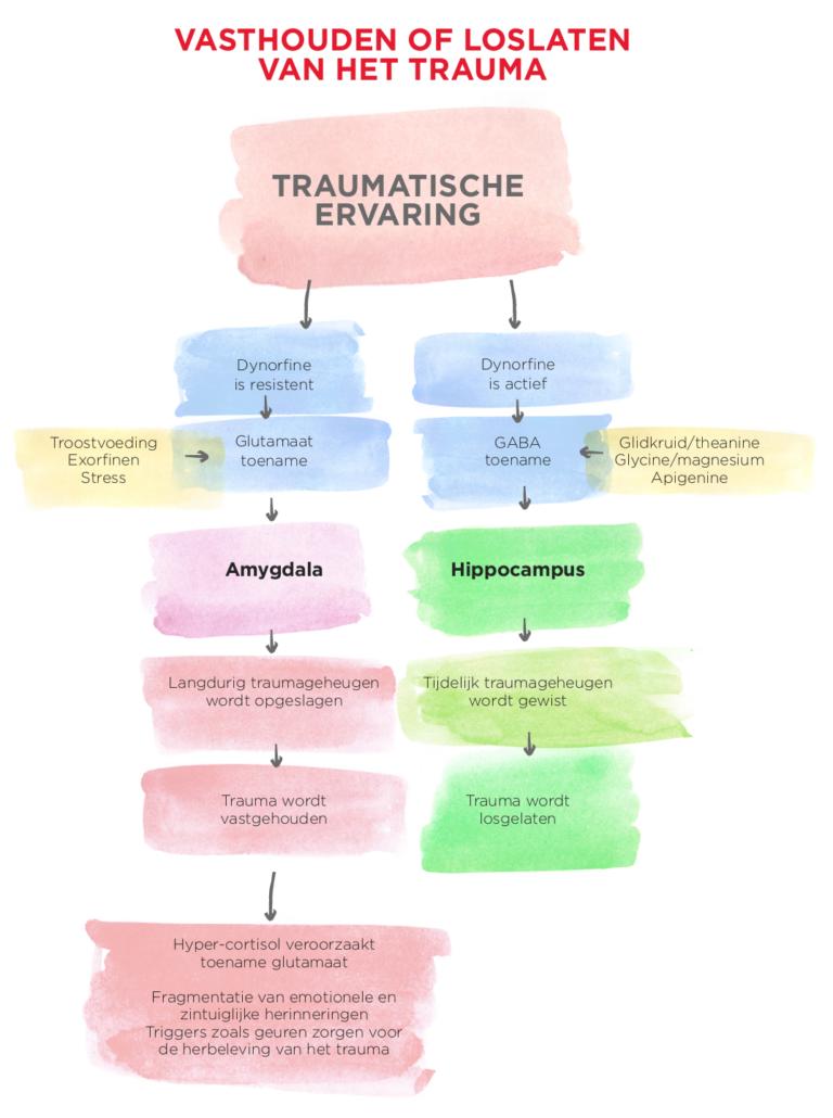 reactie-op-trauma-768x1030