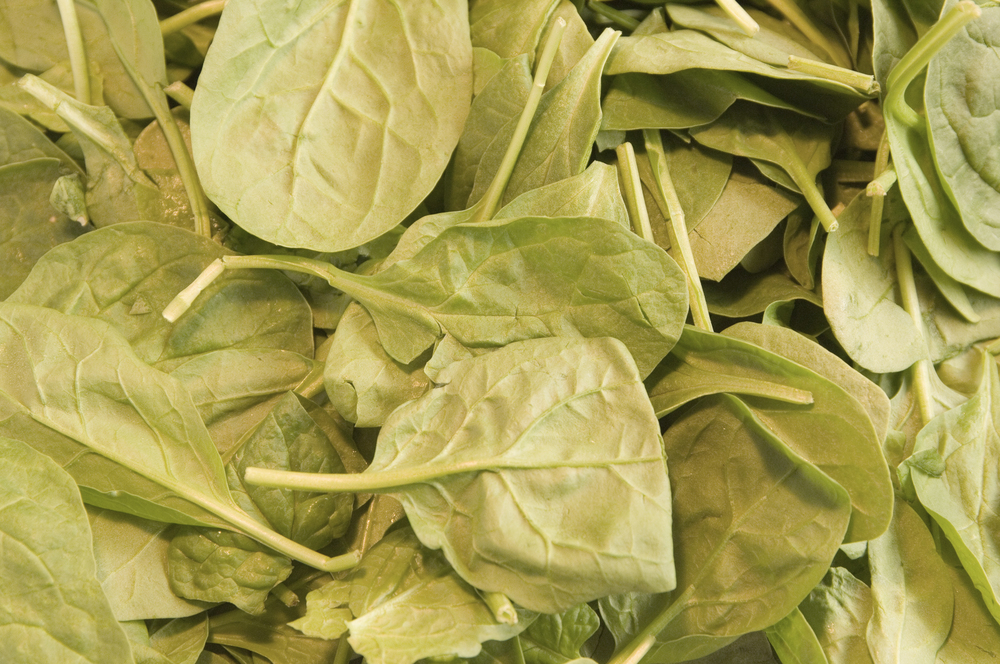 Fresh spinach-1